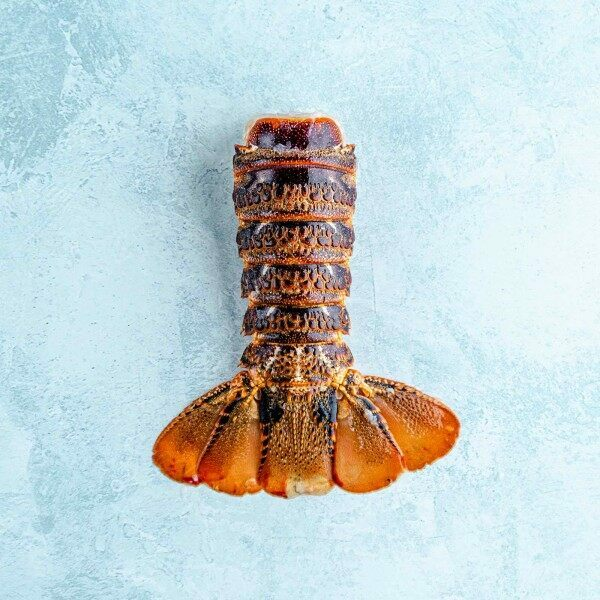 Coldwater rock lobster tails