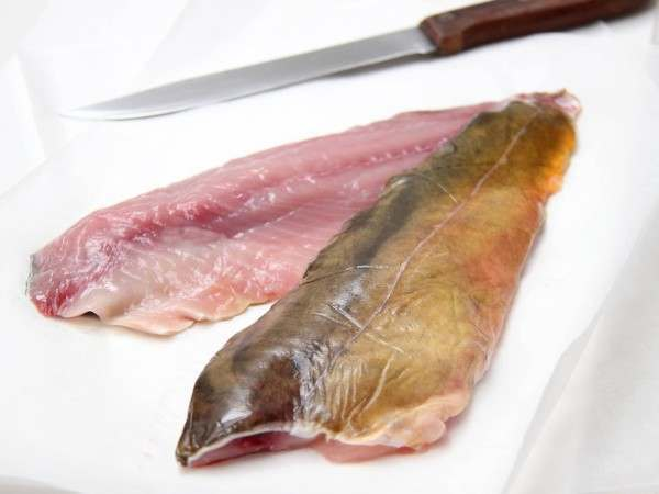 Two raw carp fillets