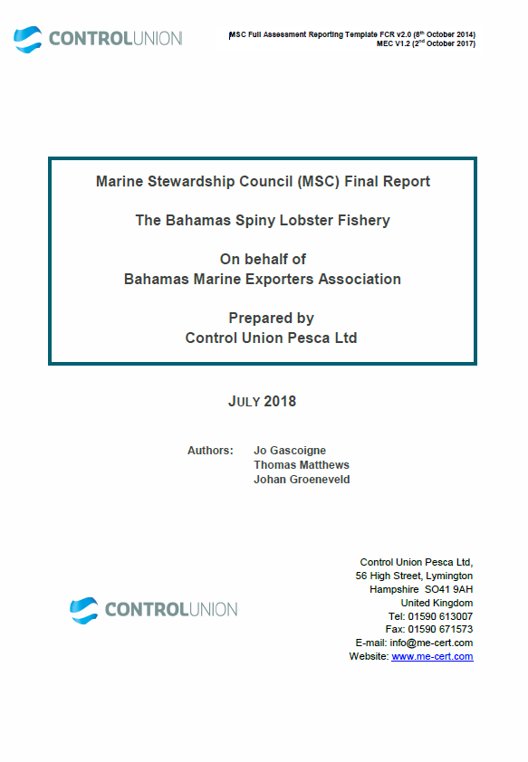Bahamas spiny lobster report