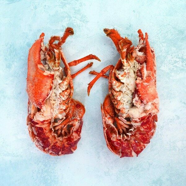 Our best dressed lobster