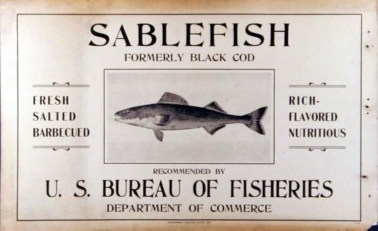 Black cod renamed to Sablefish