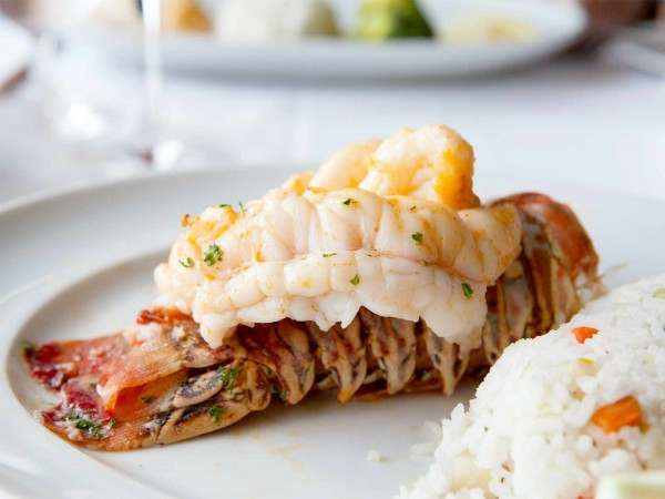 Cooked rock lobster tail