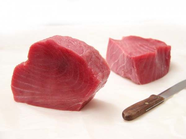 Two unsliced tuna loins on white background very red fresh tuna