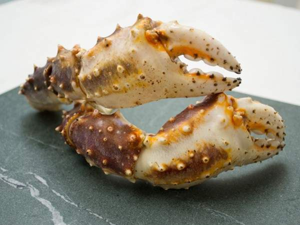 Two king crab claw arms raw