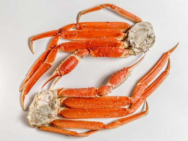 Two cooked snow crab clusters