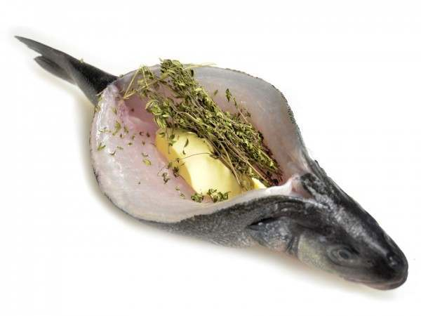 Canoed sea bass with butter and thyme