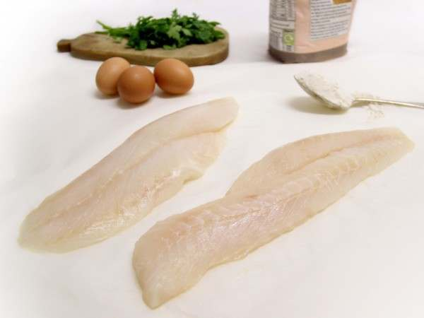 Two fine fresh blue cod fillets