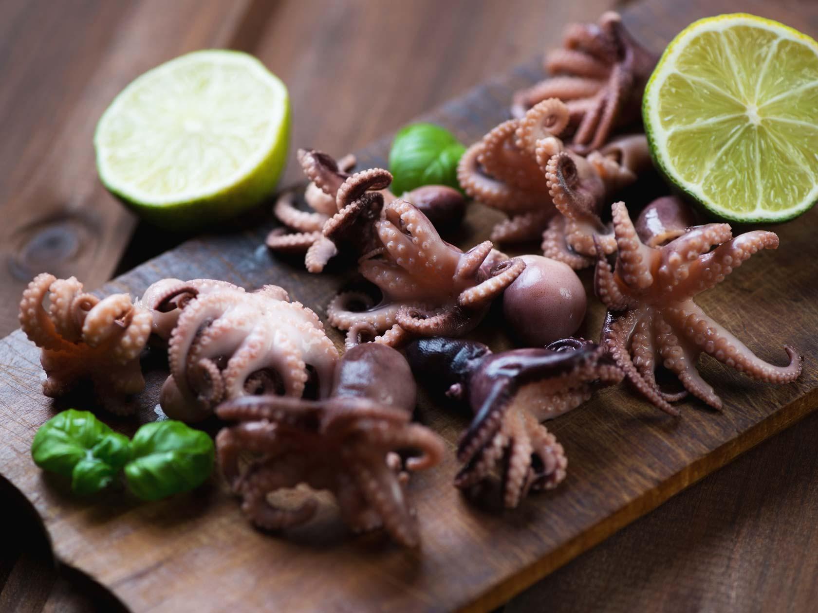Buy Baby Octopus Online Whole Frozen Asian Octopus The