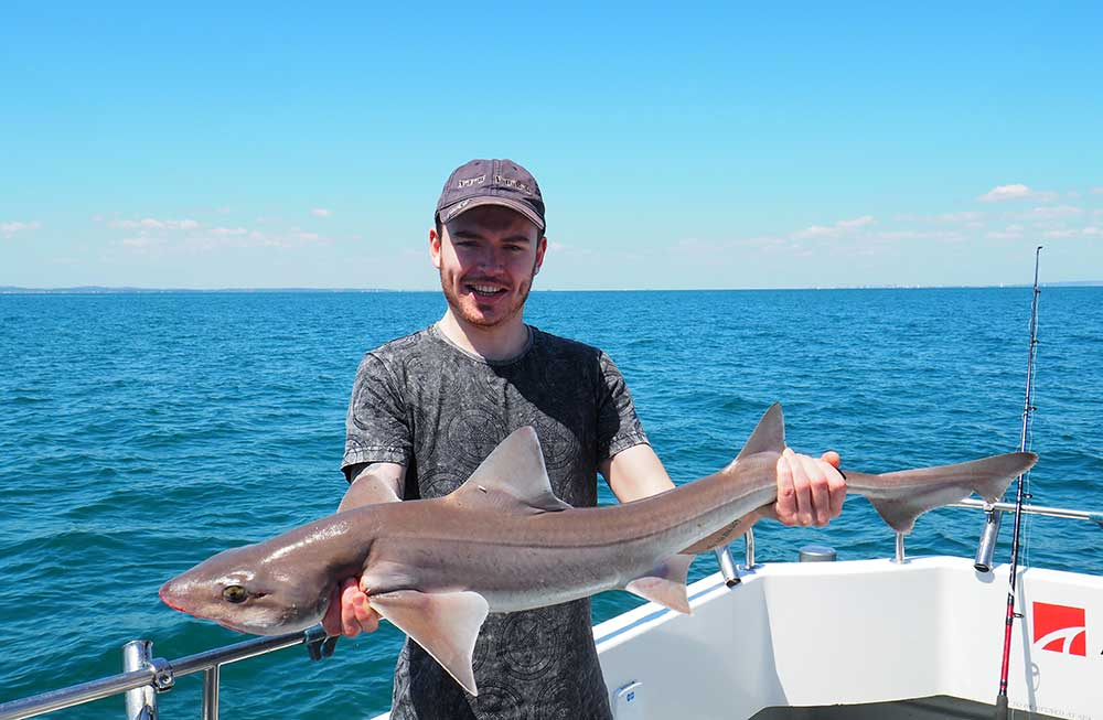 Fishing Trip Smooth Hound