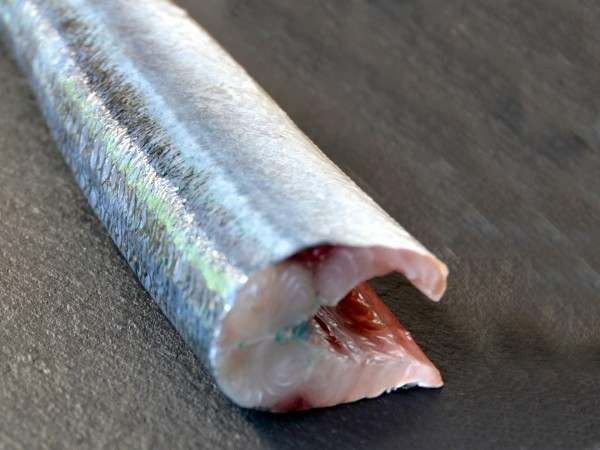 On the bone garfish
