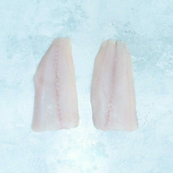 Haddock fillet portions from large Icelandic fish
