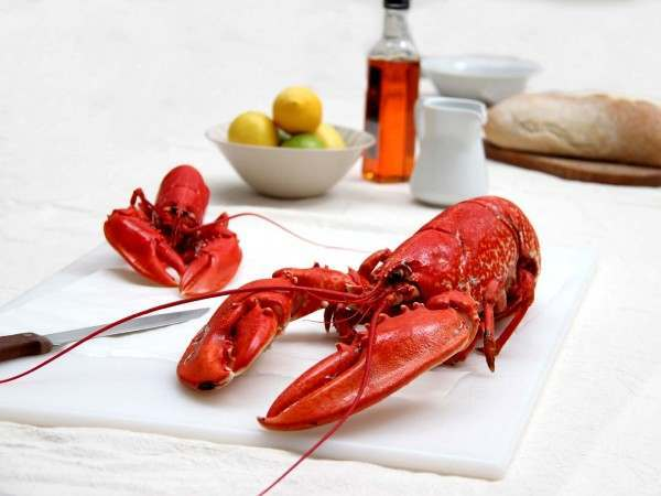 American cooked lobster