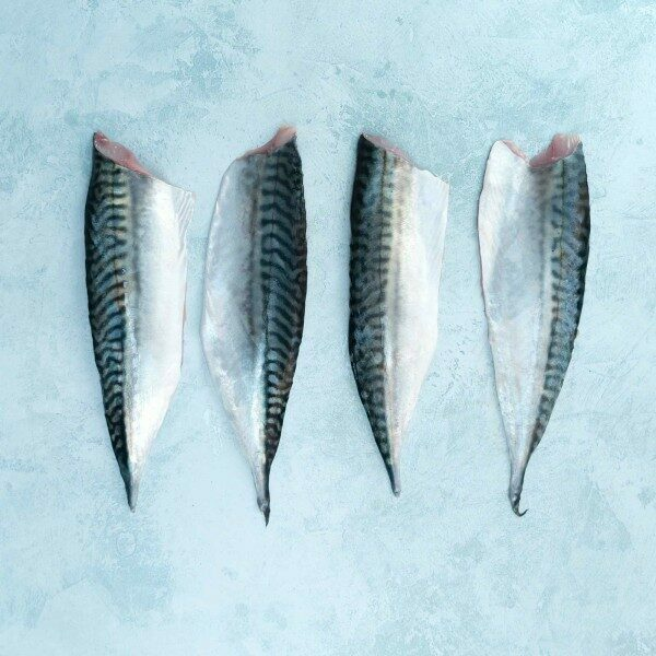 Four mackerel fillets