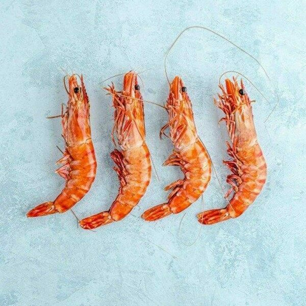 sweet and juicy Wild crevettes