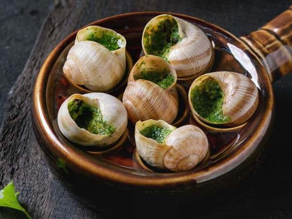 Cooked snails in snail holder