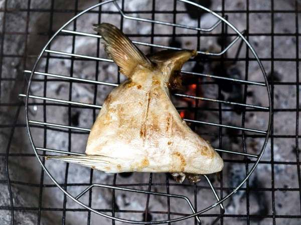Yellow tail king fish collar on the barbecue