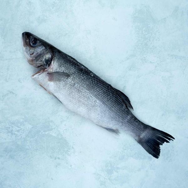Sea bass whole