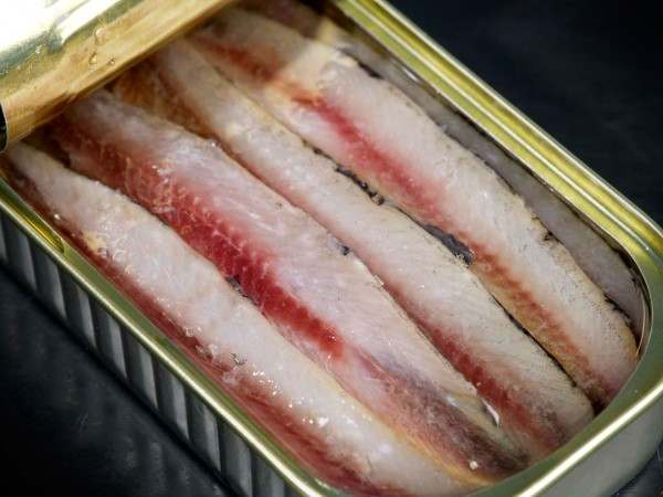 Smoked anchovy fillets