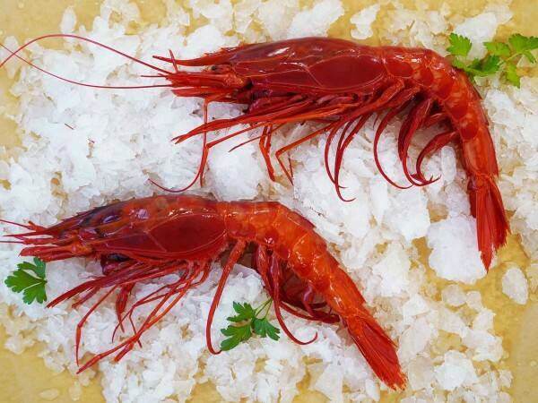 Deveined scarlet prawns