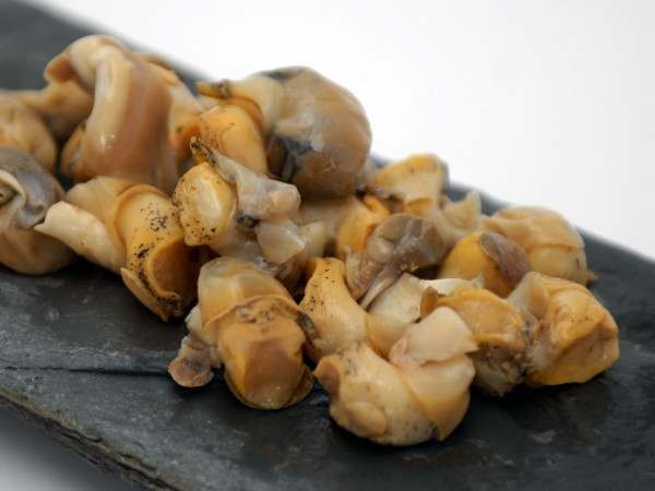 Cooked whelk meat