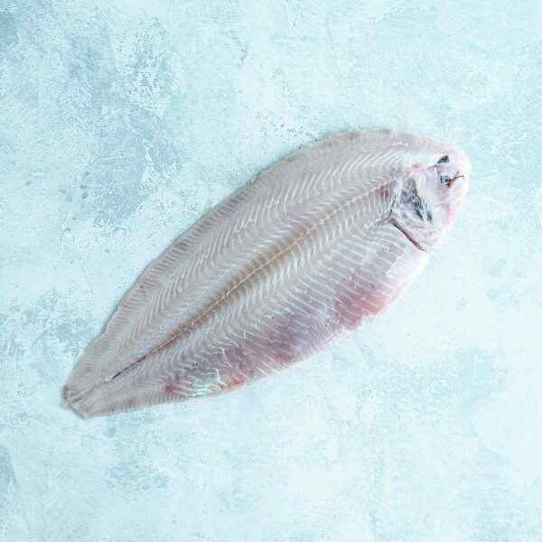 Dover sole - skinless