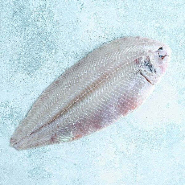 skinless dover sole