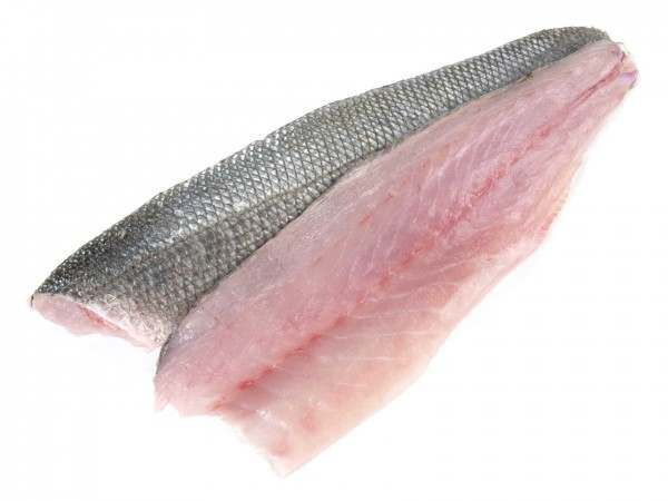Wild sea bass fillets