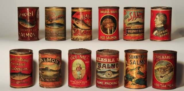 Selection of vintage salmon cans