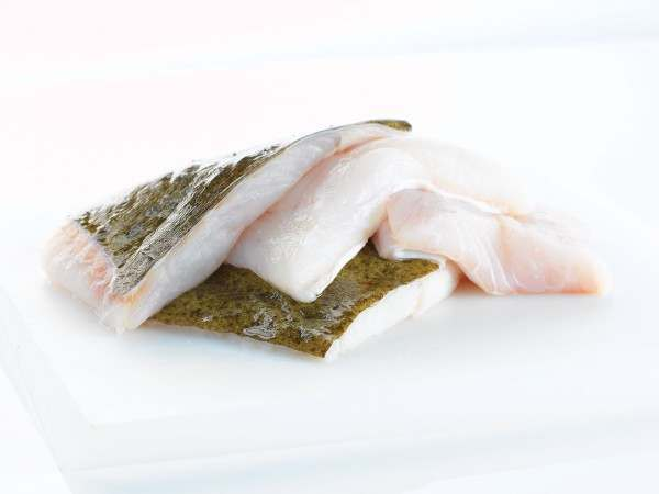 Raw brill fillet portions