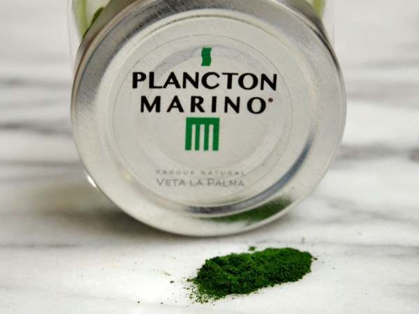 A jar of plankton marina