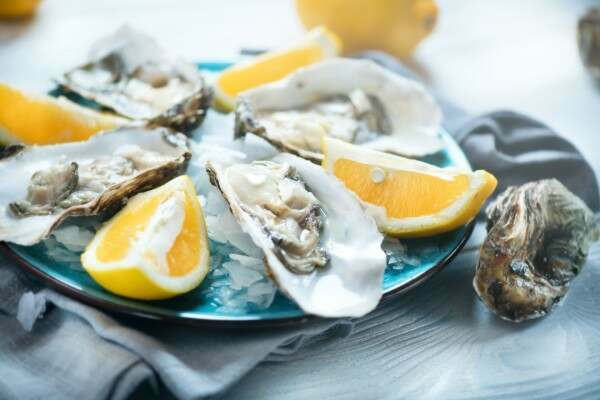 Buy Fresh Oysters in shell