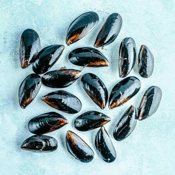 Mussels - whole