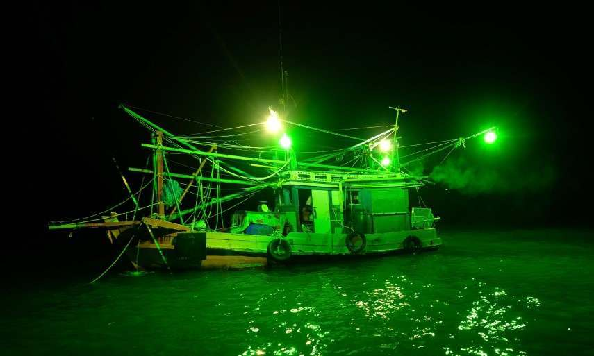 Squid fishing at night with lights