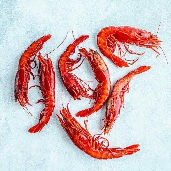 Scarlet prawns - AKA Carabineros